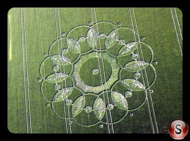 Crop circles - Codford St. Peter 2010