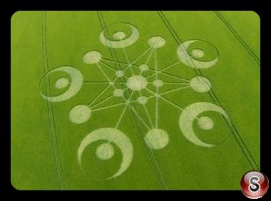 Crop circles Ackling Dyke, Near Sixpenny Handley, Dorset 2014