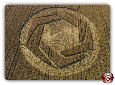 Crop circles Cheesefoot Head -  Hampshire 2016