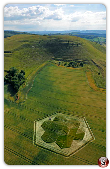 Crop circles - Cley Hill nr Warminster Wiltshire 2010