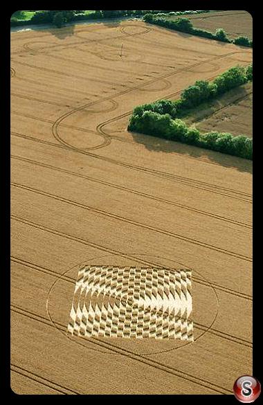 Crop circles - Aldbourne A, Wiltshire 2005