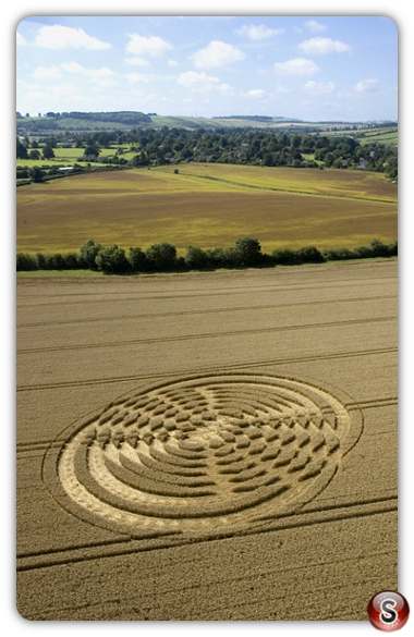 Crop circles - Shelbourne, Wiltshire 2004