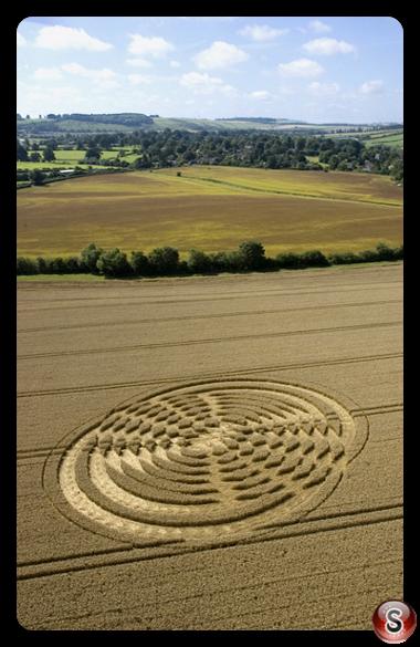 Crop circles - Shelbourne Wiltshire 2004