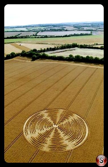 Crop circles - Shalbourne Wiltshire 2005