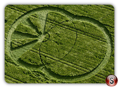Crop circles - West Kennett, Avebury ,Wiltshire 2008