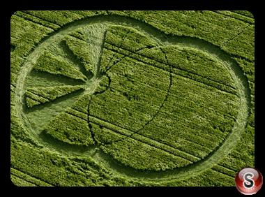 Crop circles - West Kennett Avebury Wiltshire 2008