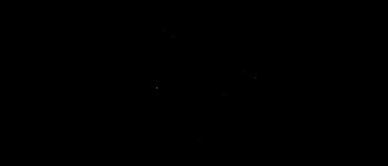 Crop circles - West Woods 2007 Diagram
