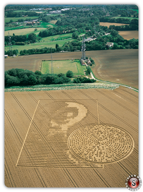 Crop circles - Sparsholt nr Winchester, Hampshire 2002 - Alien face