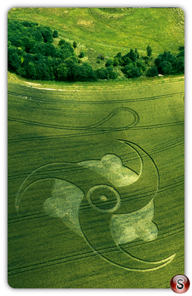 Crop circles - Litchfield, Hampshire 2003