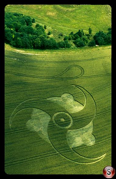 Crop circles - Litchfield Hampshire 2003