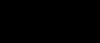 Crop circles - Crézancy en Sancerre Cher 2017 Diagram
