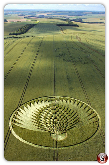 Crop circles - Uffington Castle, Oxfordshire 2006