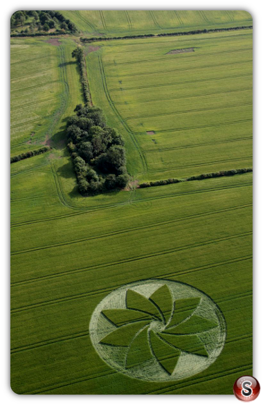 Crop circles Hoden, nr Evesham, Worcestershire. UK. 2013