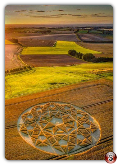 Crop circles Hackpen Hill - Wiltshire 2020