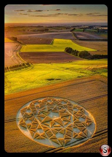 Crop circles - Hackpen Hill Wiltshire 2020