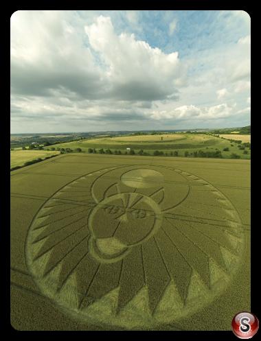 Crop circles - Figsbury Rings Wiltshire 2016