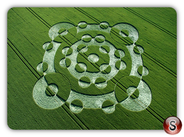 Crop circles - Lurkeley Hill, East Kennett, Wiltshire 2005