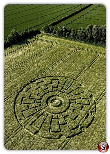 Crop circles Sixpenny Handley - Dorset 2020