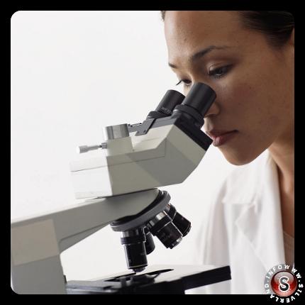 Studi e analisi microscopiche