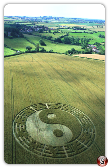 Crop circles - Stantonbury Hill, Somerset 2007