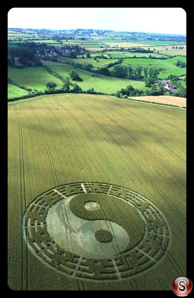 Crop circles - Stantonbury Hill Somerset 2007
