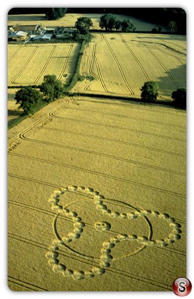 Crop circles - West Tisted, Hampshire 2000