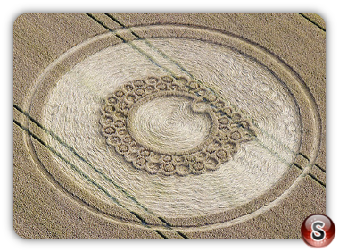 Crop circles - Roundway Hill nr Devizes Wiltshire 2011