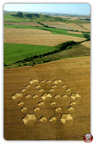 Crop circles - Cherhill, Wiltshire 2005