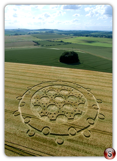 Crop circles - The Ridgeway, Wiltshire 2008