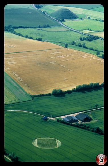 Crop circles - East Kennett Wiltshire 2000