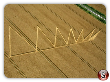 Crop circles - Longwood Rd nr Owslebury Hampshire 2012