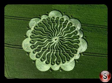 Crop circles - Waden Hill Wiltshire 2009