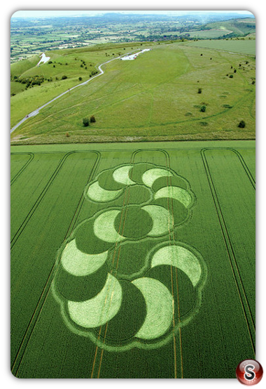 Crop circles - Westbury White Horse, Wiltshire 2007