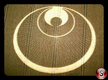 Crop circles - Great Shelford (Angel) Cambridgeshire 2001