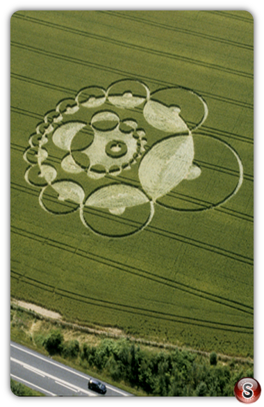 Crop circles - Bishops Sutton, Hampshire 2000