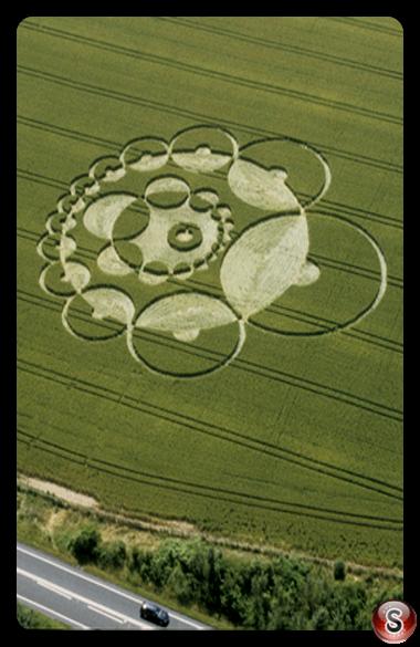 Crop circles - Bishops Sutton Hampshire 2000