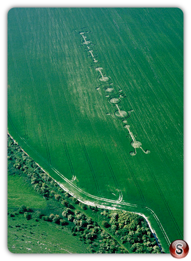 Crop circles - East Field, Alton Barnes, Wiltshire 1999