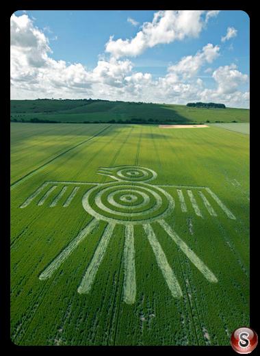 Crop circles - Barbury Castle Wiltshire 2009