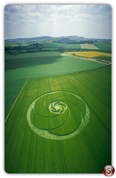 Crop circles - Windmill Hill, Wiltshire 2003