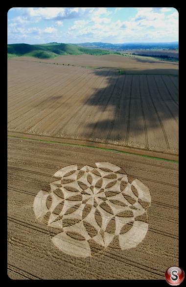 Crop circles - Stanton, St. Bernard, Wiltshire 2007