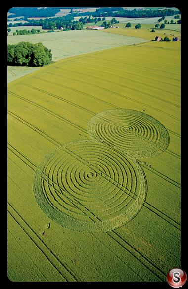 Crop circles - Porchester 2004