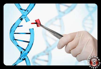 Studio del DNA umano