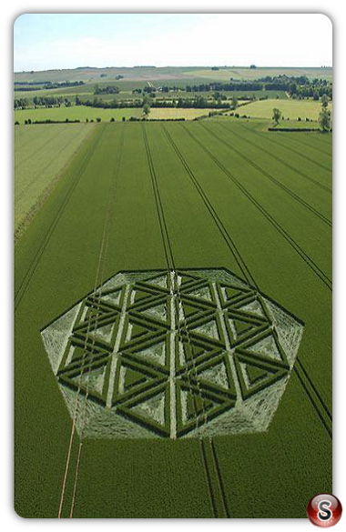 Crop circles - Windmill Hill (Nr Avebury), Wiltshire 2005