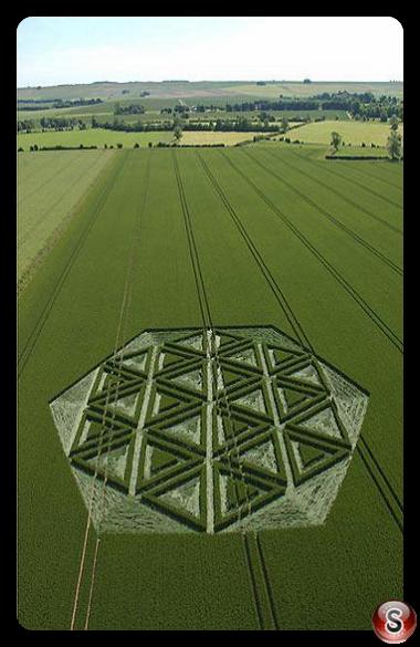Crop circles - Windmill Hill (Nr Avebury) Wiltshire 2005