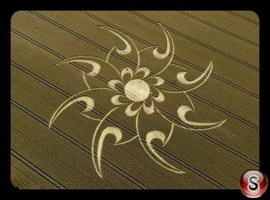 Crop circles - Cherhill, Wiltshire 2008