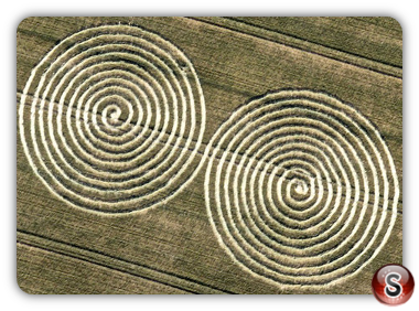 Crop circles Chaddenwick Hill, nr Mere - Wiltshire 2011