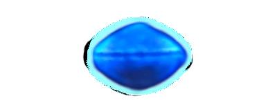 Ritaglio dell'UFO Pitlochry ripreso nel video