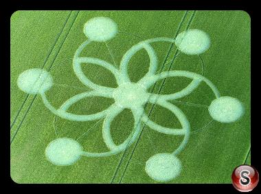 Crop circles - Chicklade Wiltshire 2017