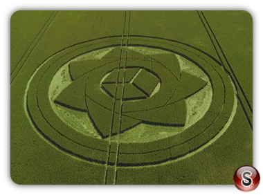 Crop circles - Boreham Wood Wiltshire 2017