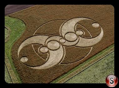 Crop circles - Windmill Hill nr Avebury Trusloe Wiltshire 2012